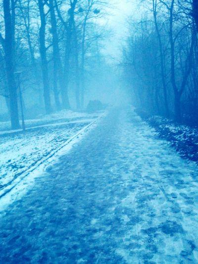 Polska Przemysl Podkarpacie Lubieto Tuman Mgla Sprzedam Tanio туман Польша радость продам доброеутро First Eyeem Photo