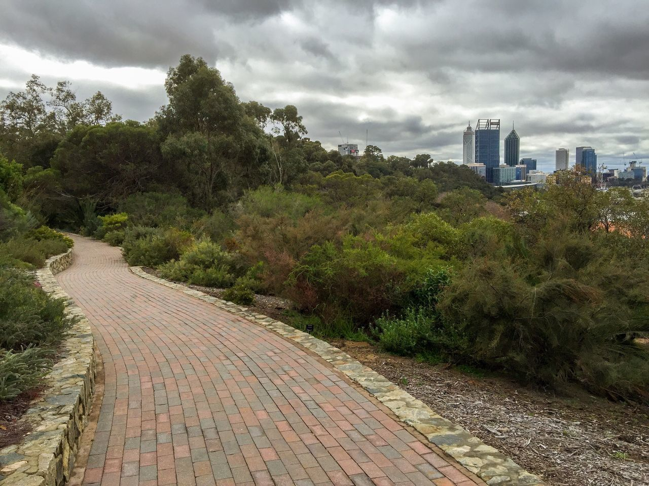 Perth Cityscape: King's Park Views Cityscape Architecture Urban Buildings Overcast Diminishing Perspective Landscape Lush Foliage Trees Plants Outdoors Nature Perth Australia Botanical Gardens King's Park Western Australia Sidewalk Path Stone Brick Lush Bush Cloudy Green