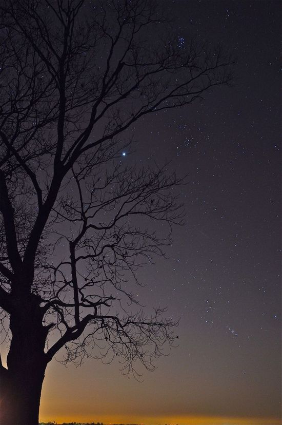 Orions Belt Starry Night Starry Sky Long Exposure Nightphotography Astrophotography Wish Upon A Star taken outside of Sandwich, Illinois Oct 2013 Landscapes With WhiteWall