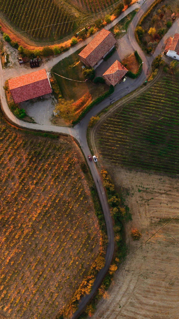 aerial view, rural scene, agriculture, high angle view, landscape, scenics, outdoors, nature, field, road, no people, beauty in nature, winding road, patchwork landscape, day