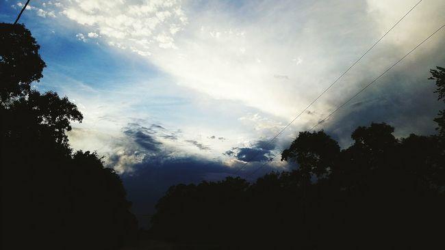 Sky And Clouds Photogra-tree