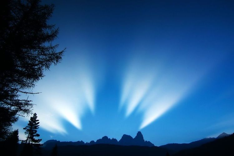 Blue Tree Night Mountain Scenics Silhouette Nature Sky Landscape Beauty In Nature Outdoors Clear Sky Manfrotto Manfrottoimaginemore Marchetti Milko Photographer Photo Of The Day Blue Sky Passo Rolle Italy 🇮🇹