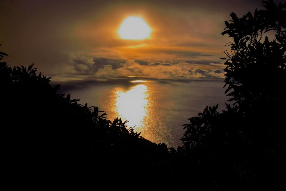 Sun Piercing Low Clouds and Mist over The Atlantic Autumn Beauty In Nature Cloud - Sky Contrast Dramatic Sky Foggy Weather Light And Dark Light And Shadow Misty Nature No People Outdoors Scenics Sky Sun Sun And Clouds Playing Tree Treeline Silhouette Water