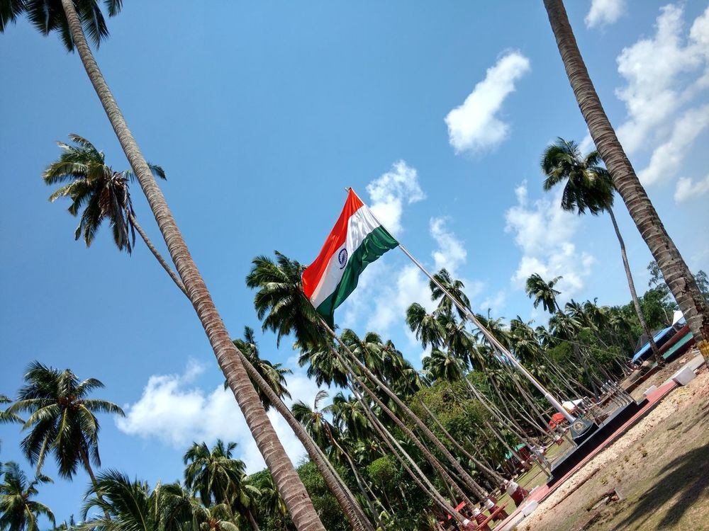 Andaman & Nicobar Islands Ross Island Tree Sky Low Angle View Flag Cloud - Sky Day Patriotism No People Growth Outdoors Nature Travel Destinations Beautiful Day Natural Beauty Coconut Palm Tree India Flag EyeEm Best Shots Pattern, Texture, Shape And Form Vacations Famous Tourist Destinations Famous Place. Park View Sky And Clouds