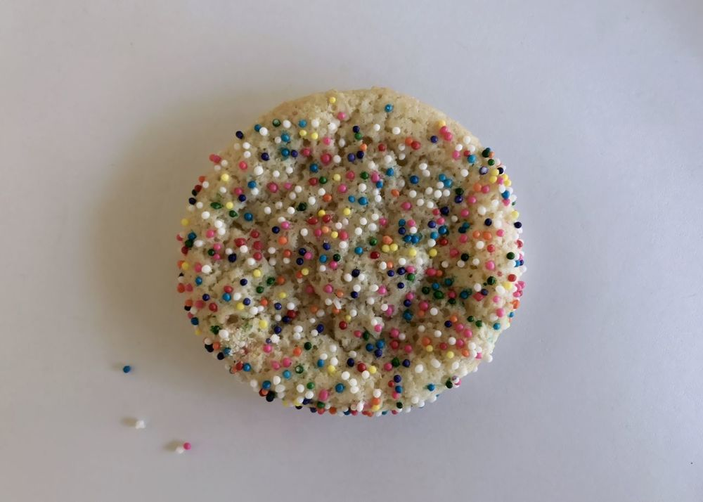 One nonpareil covered sugar cookie from above. Sugar Cookie Cookie Nonpareils White Background Sweet Food Food And Drink Sprinkles Multi Colored Indulgence Food Directly Above Studio Shot Ready-to-eat Dessert No People Temptation Close-up Indoors  Freshness