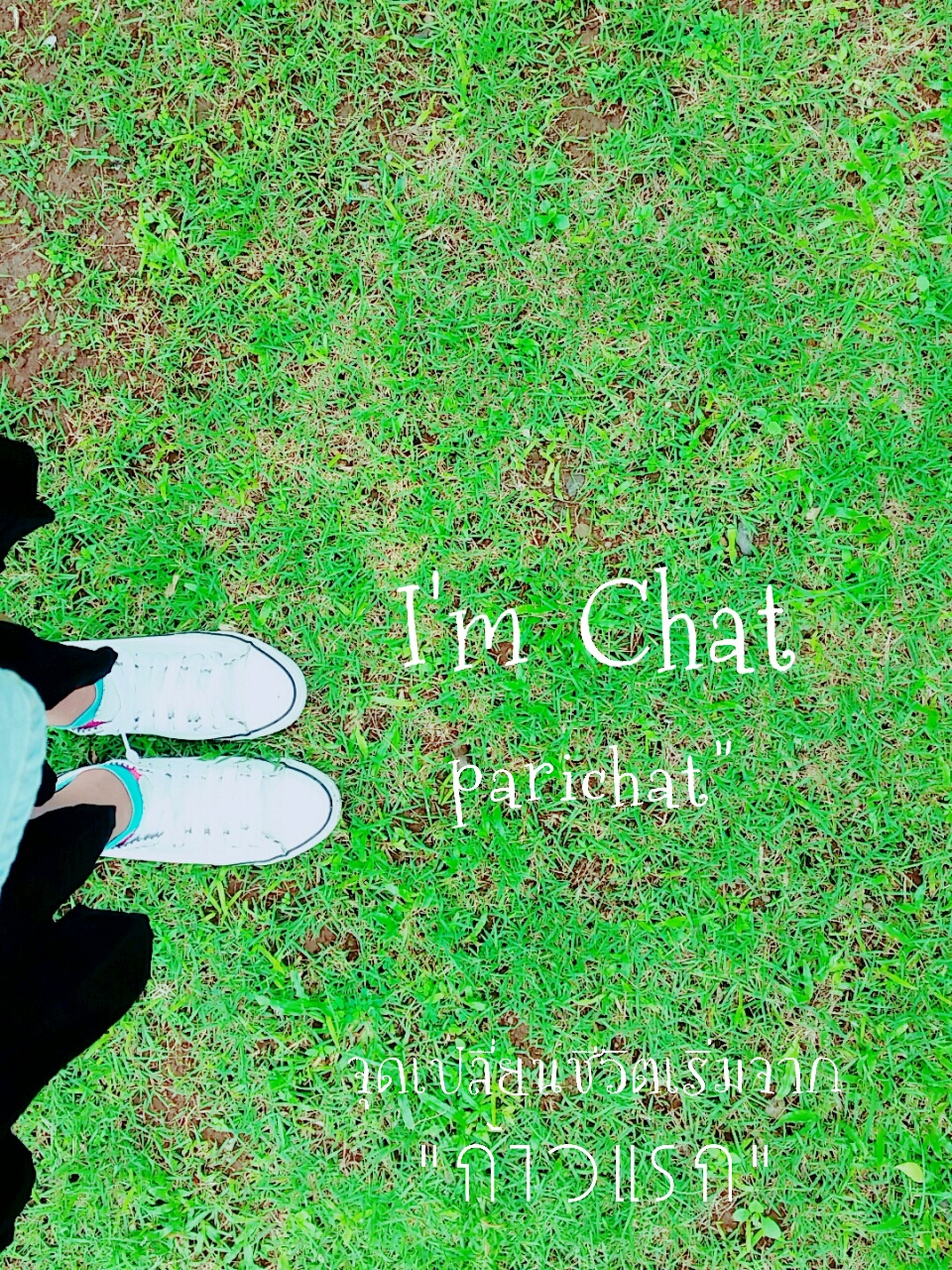 grass, text, communication, western script, green color, high angle view, field, grassy, low section, personal perspective, part of, sign, cropped, shoe, person, lifestyles, leisure activity