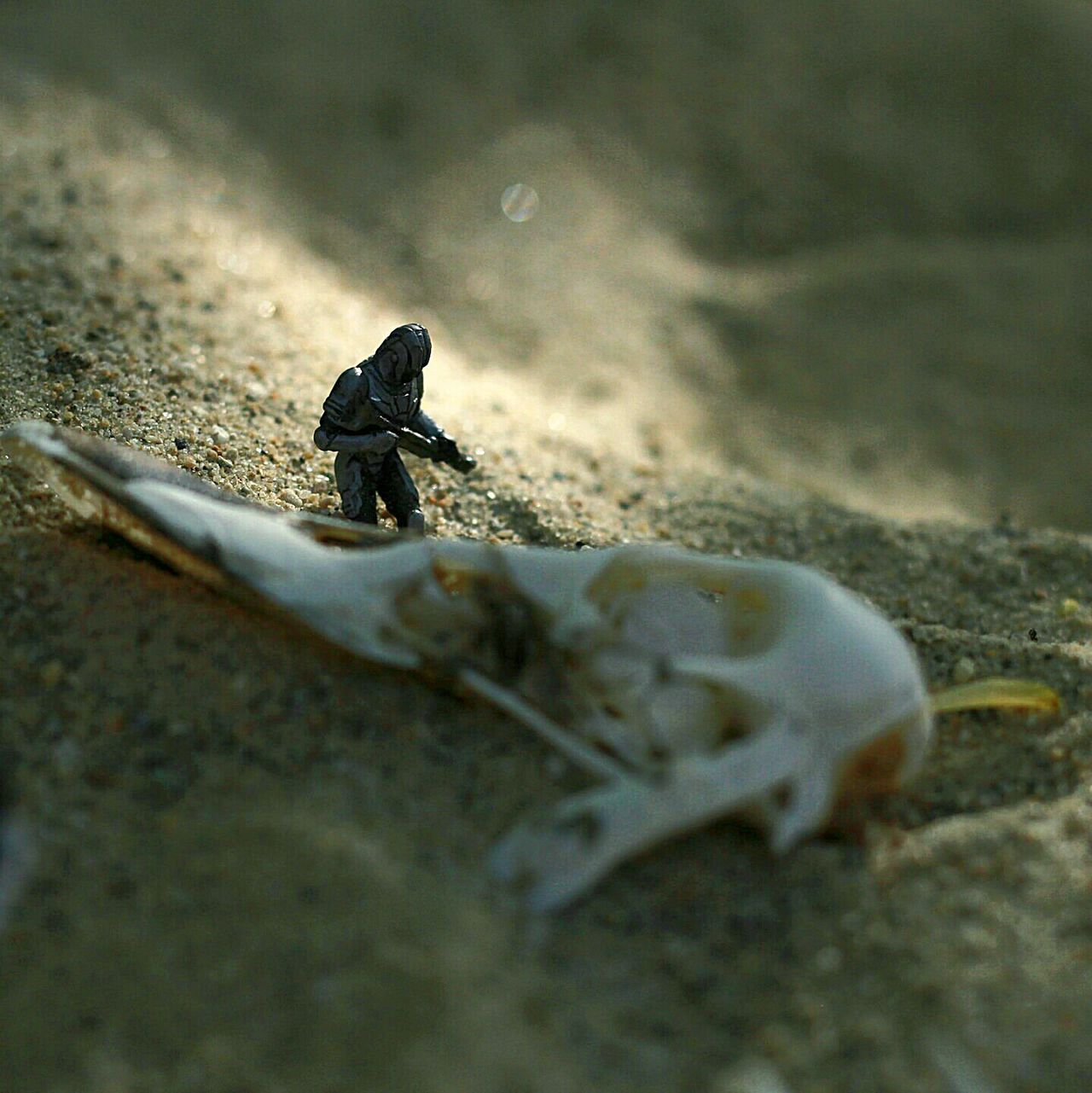 Shipwrecked. TieFighterPilot Starwars Toyphotography Toyartistry Wizardsofthecoast Starwarsminifigures Toyoutsiders