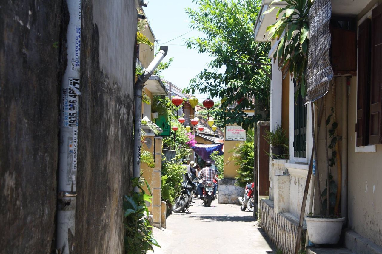 Built Structure Architecture The Way Forward Tree Day Outdoors Building Exterior Real People City Flower Nature People Vietnam Hoi An