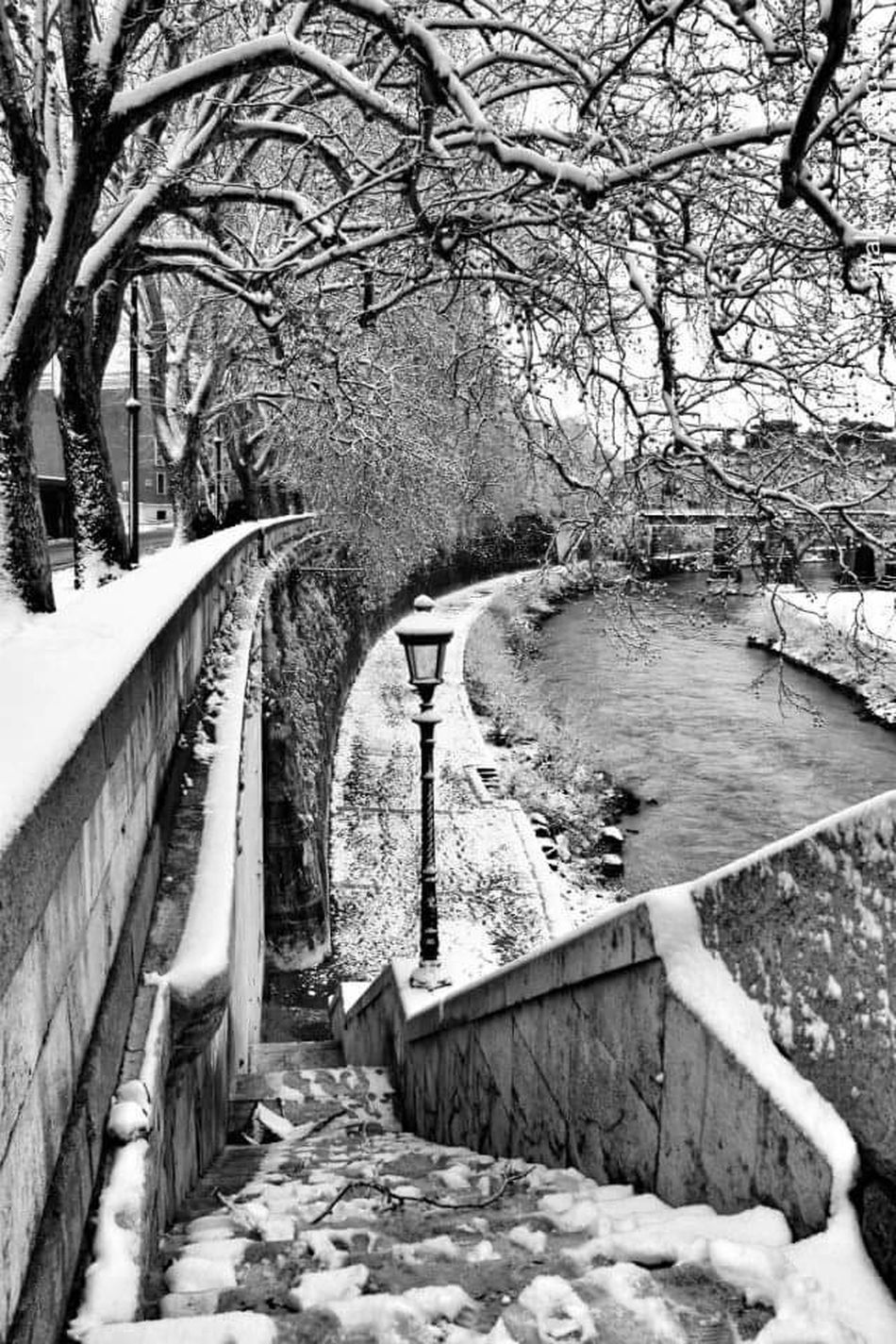 Roma Rome Rome Italy Italia Italy Italy🇮🇹 Italy❤️ Lungotevere Snow ❄ Snow Day Snow Street Streetphotography Street Photography Lampions Lampione Black & White Black And White Photography Black And White Collection  Blackwhite Bianco&nero Biancoenero Biancoeneroitalia Bianco E Nero Italia River View