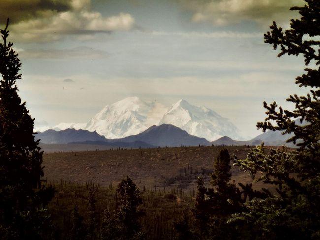 Mount McKinley Mount Denali Denali National Park & Perserve Alaska Hiking Mountains Landscape_Collection Traveling Enjoying Life