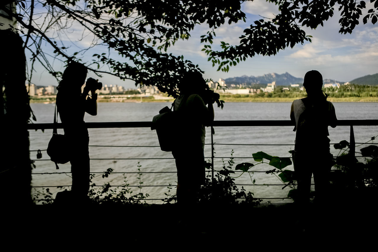 Bonding Full Length Han River Hangang Lake Leisure Activity Lifestyles Men Nature Person Rear View Sea Seonyoudo Silhouette Sky Standing Taking Photos Taking Pictures Three Girls Togetherness Tranquil Scene Tranquility Tree Water