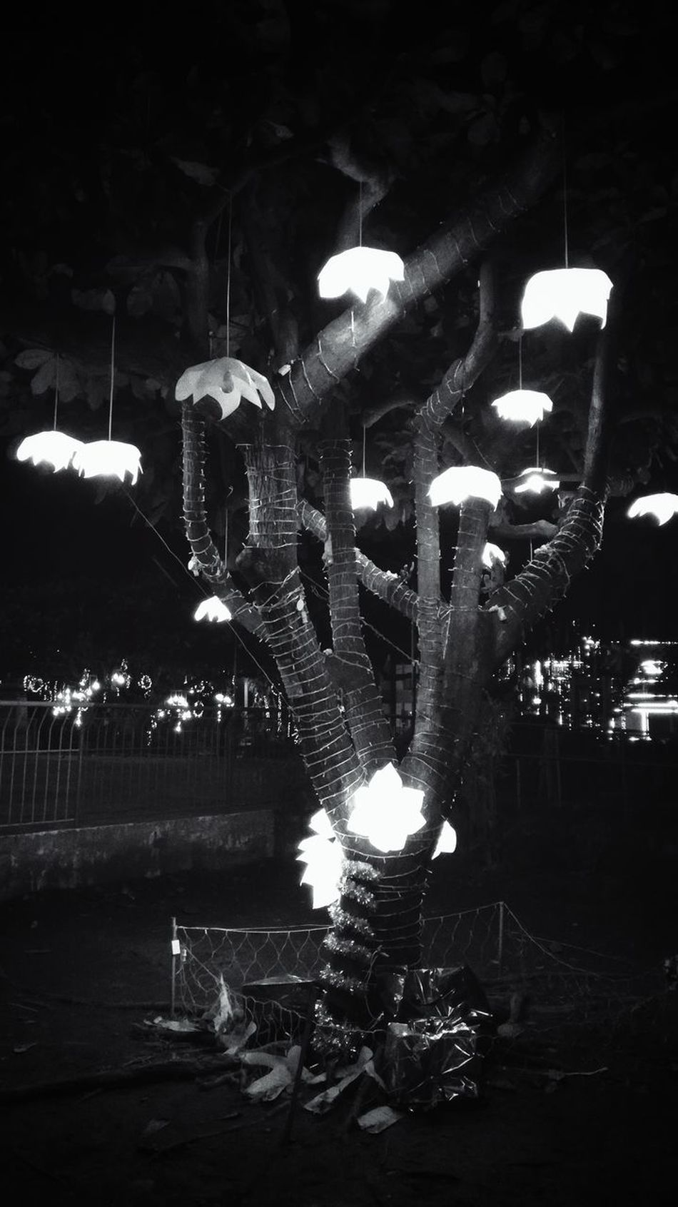 Lighted Tree Night EyeemPhilippines The City Light Lines And Patterns Belief And Faith Culture And Tradition Eyeem Philippines Black And White Collection  Black & White Photography EyeEm Travel Photography Arts Culture And Entertainment Sculpture