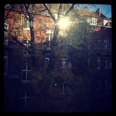 #gooqx #office #window #sunshine #tgif #thankgoditsfriday Sunshine Tgif Window Office Gooqx Thankgoditsfriday