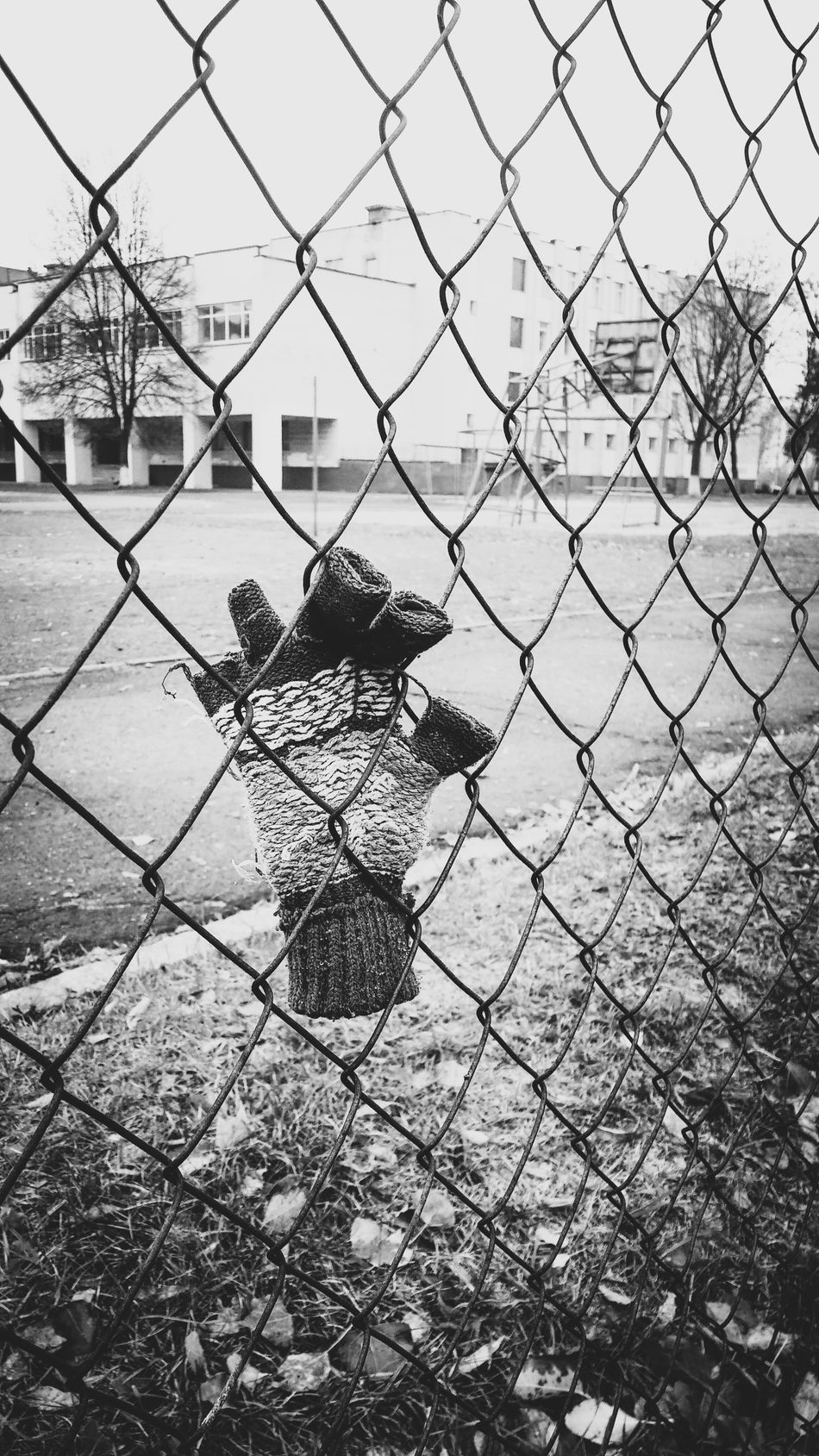 Chainlink Fence Metal Lonely Loneliness Scool Assault Wall Migration Migrating Border Restricted Restricted Area Refugees Net Refugee Protection Belarus Blackandwhite