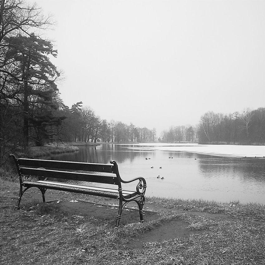 Vscocam Mobilephotography Black & White Blackandwhite
