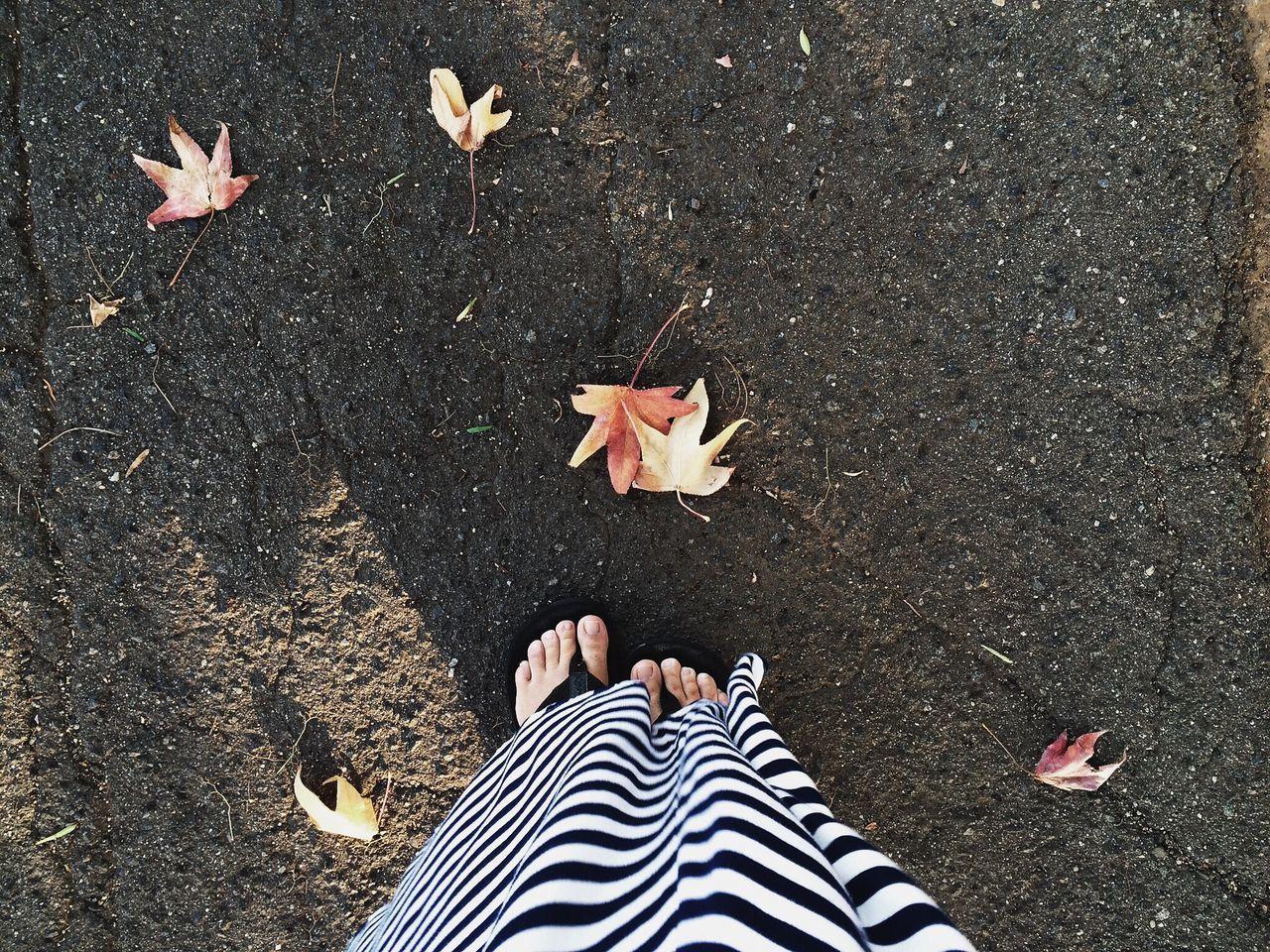 Fall in SoCal