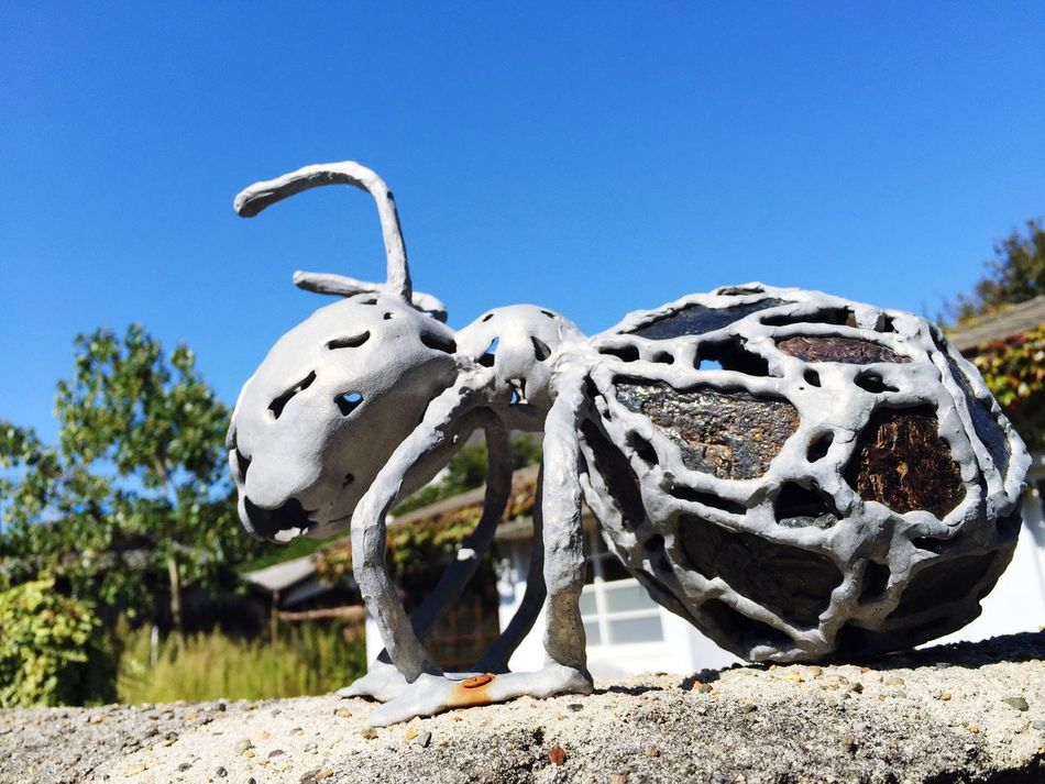 Ants ArtWork Walking Around Osanpo Camera