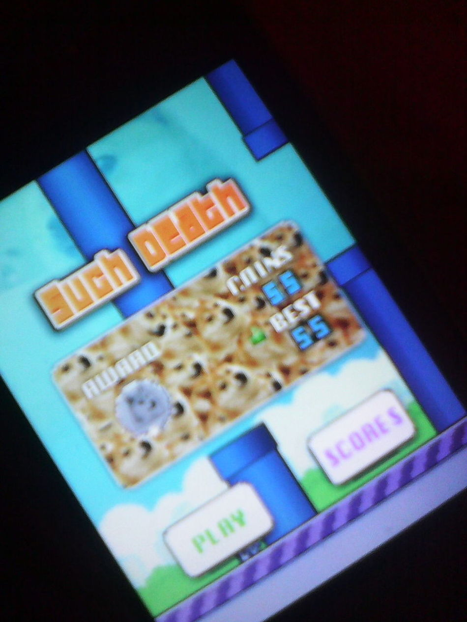 Flappy Birds record for me 55 WOWW :D Flappy Bird Record 55 New High Score