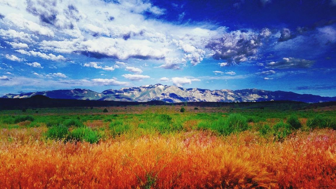 Check This Out Carson Valley NEVADA, USA!♡ Desert Beauty Landscape_photography EyeEm Nature Lover No People Mountain Range Mountain View Nature Photography Images Fine Art Good Morning 300th Photo! Amazing View Unbelievable Views View Of Mountains So Much Colors Mountain_collection Oasis Desert Inspired By Nature Spectacularview