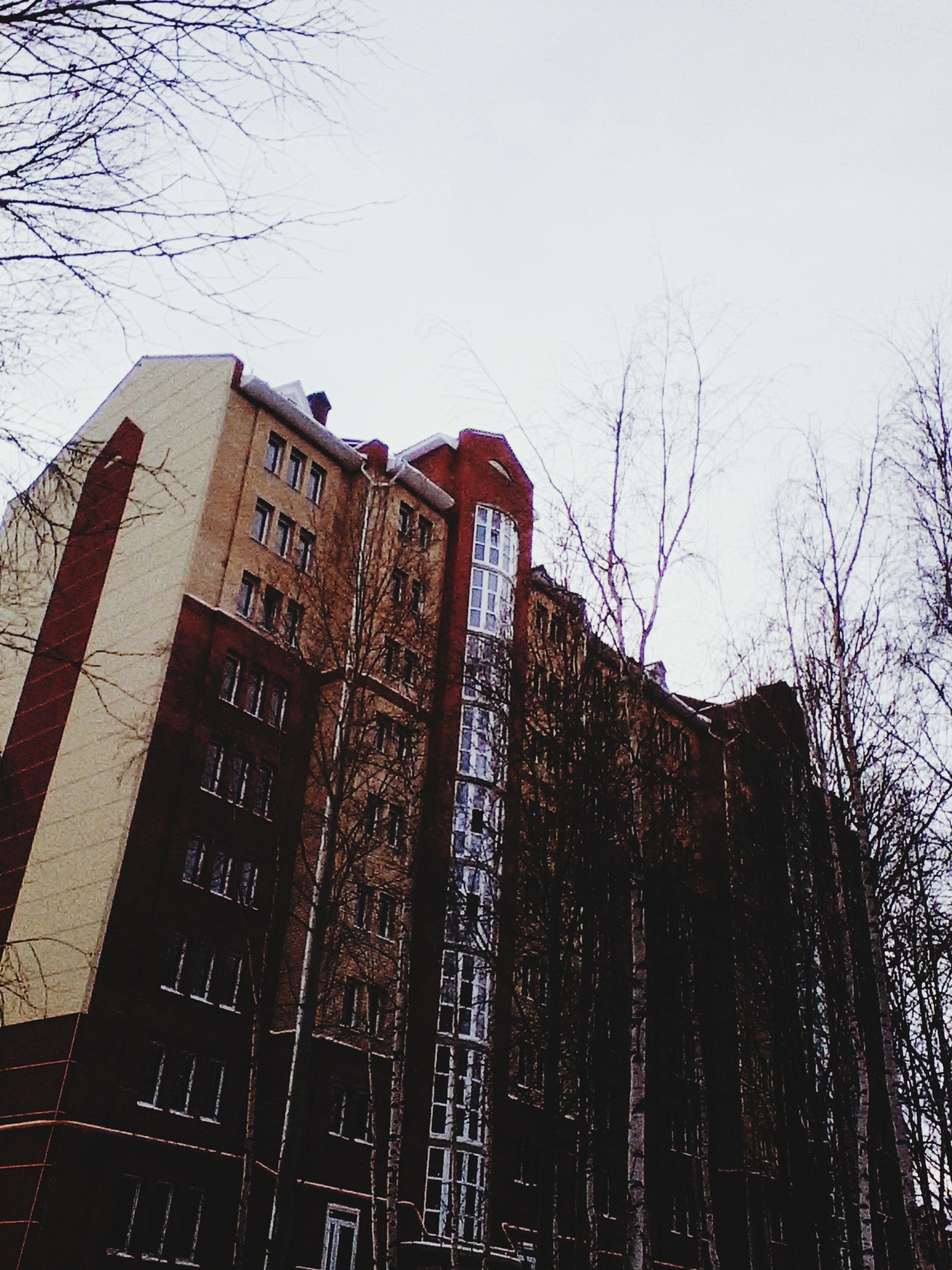 building exterior, architecture, built structure, low angle view, tree, building, bare tree, city, clear sky, tower, tall - high, sky, branch, residential building, outdoors, window, day, no people, office building, residential structure