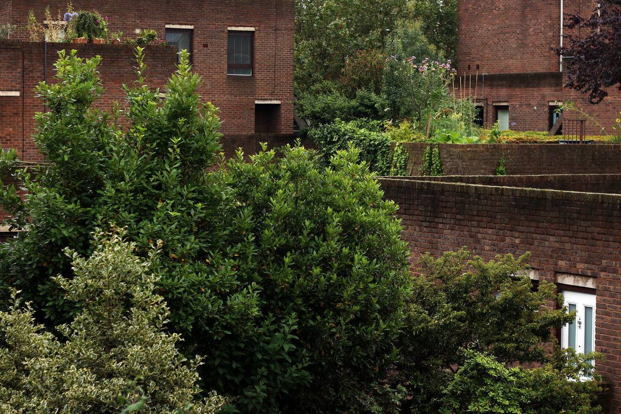 Brick Brick Building Brown Green Housing London Modernism Odhams Trees