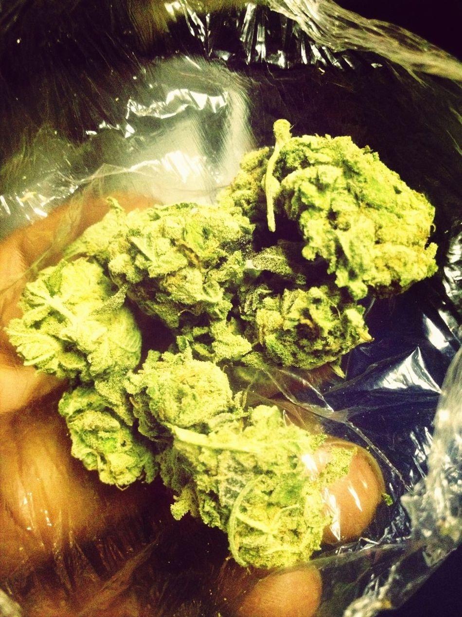 Good Weed No Seeds