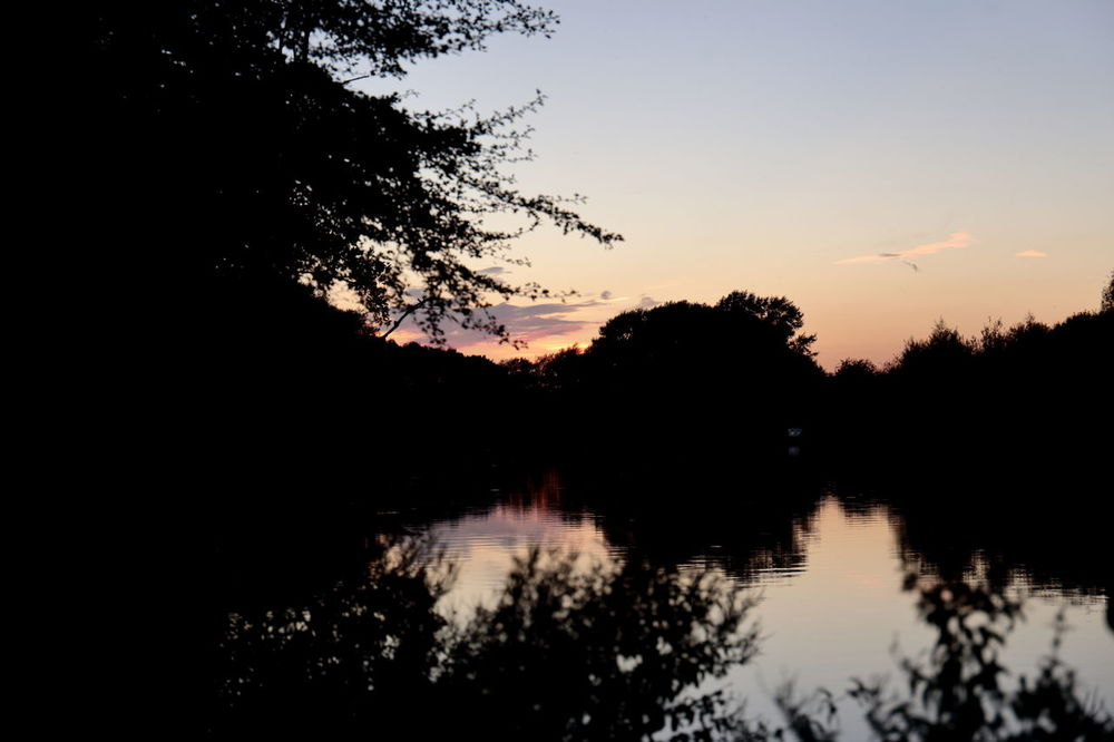 Beauty In Nature Day Film Lake Nature No People Outdoors Reflection Reflection Lake Scenics Silhouette Sky Sunset Thames Tree Water