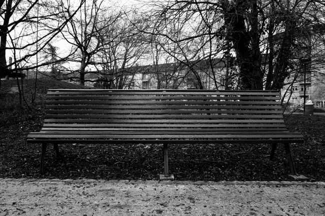 Bench Nature Ricoh Gr Black And White Errance Everybodystreet Geneve Geneva Mood No People Street Photography Streetphotography Wandering