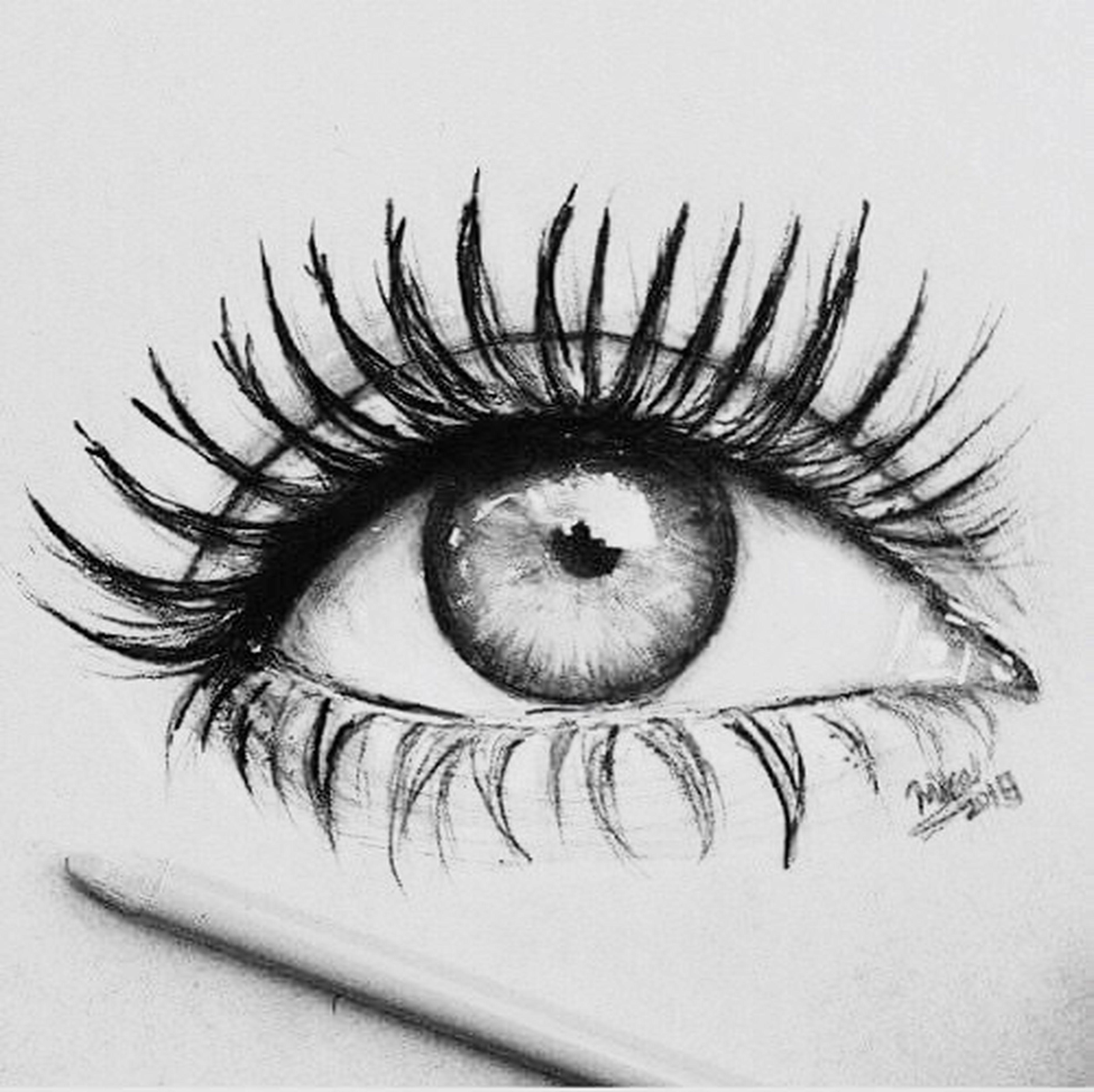 human eye, eyelash, extreme close-up, macro, human body part, iris - eye, close-up, sensory perception, eyeball, eye, eyeshadow, eyesight, beauty, one person, eyebrow, women, people, mascara, adults only, adult, day