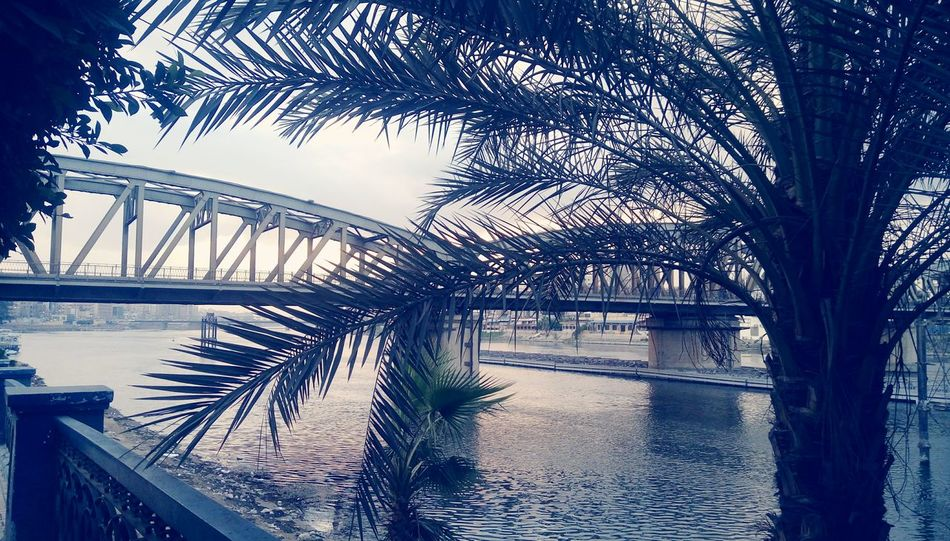 Water Bridge - Man Made Structure Reflection Sky Tree Sunset River Outdoors No People Connection Nature Beauty In Nature Architecture Day Streetphotography Nile River Mansoura Built Structure Egypt City Building Exterior