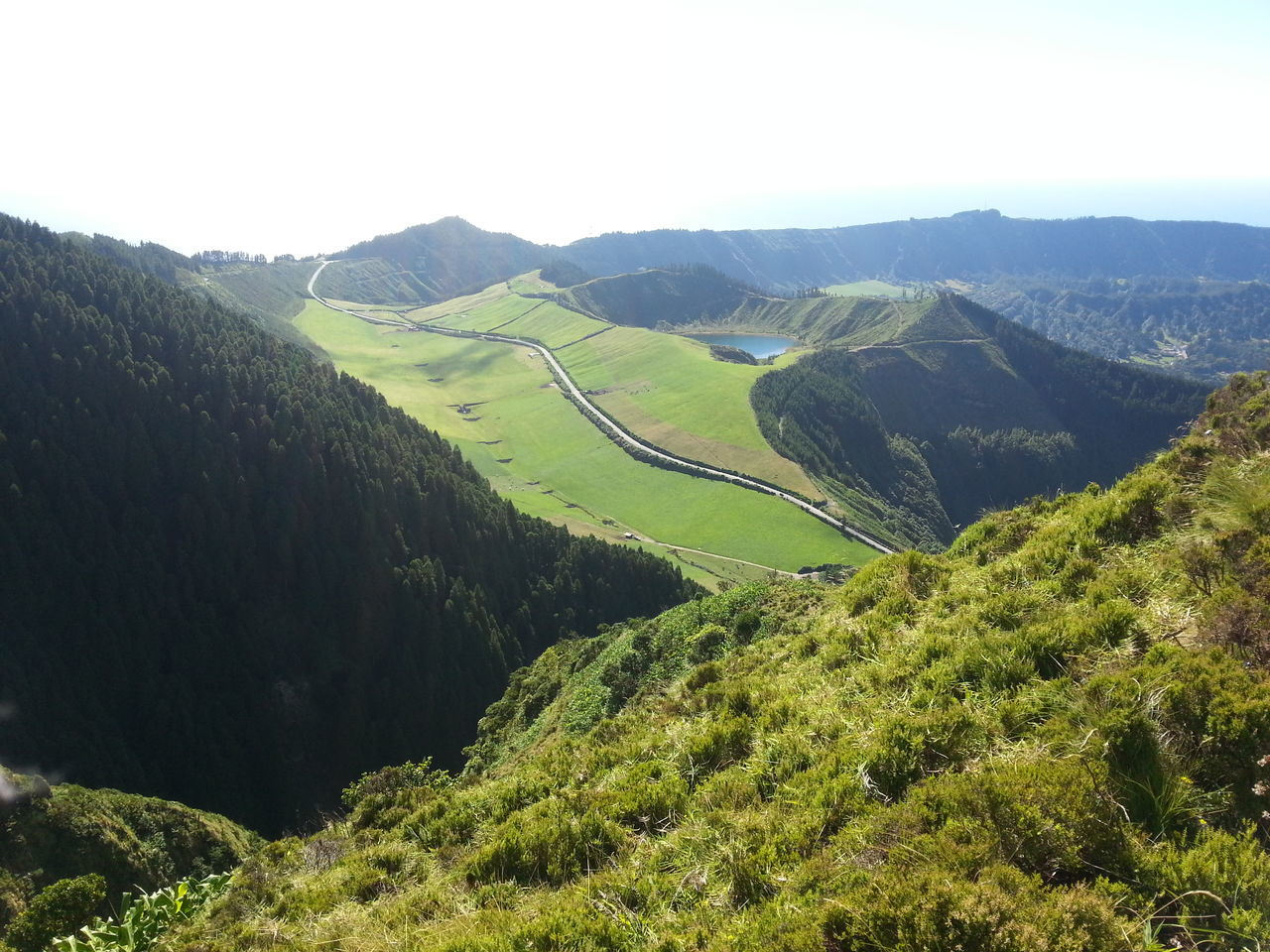 Azores Beauty In Nature Clear Sky Day Green Color Growth Landscape Mountain Nature No People Outdoors Scenics Tranquil Scene Tree