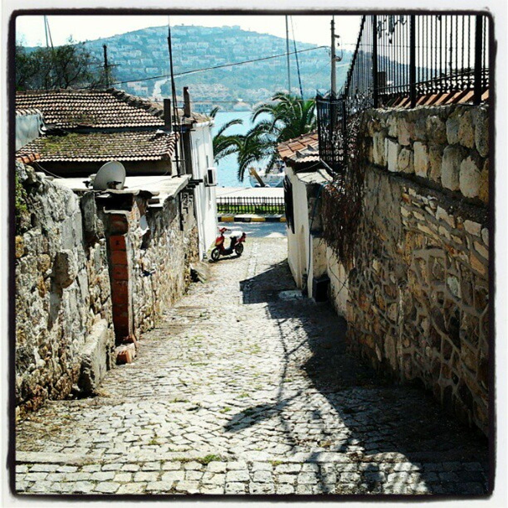 Street Sea Foca Nature @semenuyumazer
