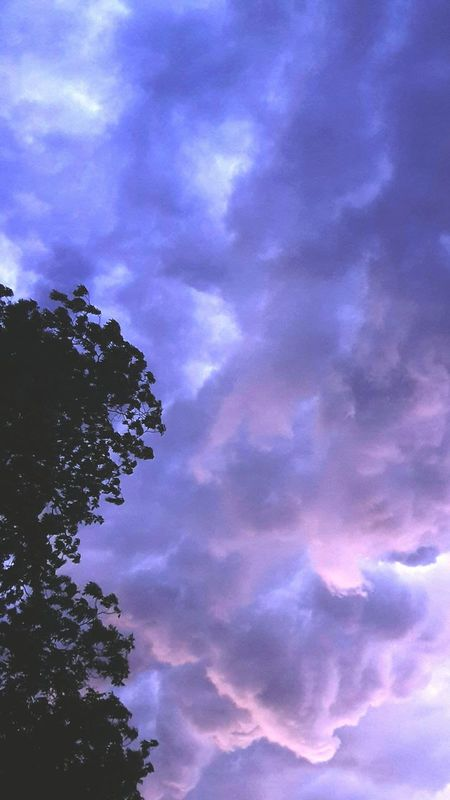Taking Photos Check This Out Treetop Tree And Sky Nature On Your Doorstep Stormy Weather Storm Clouds Arkansas Nature Photography Nature At Its Best Colorful Clouds Sun Still Shines Art Is Everywhere