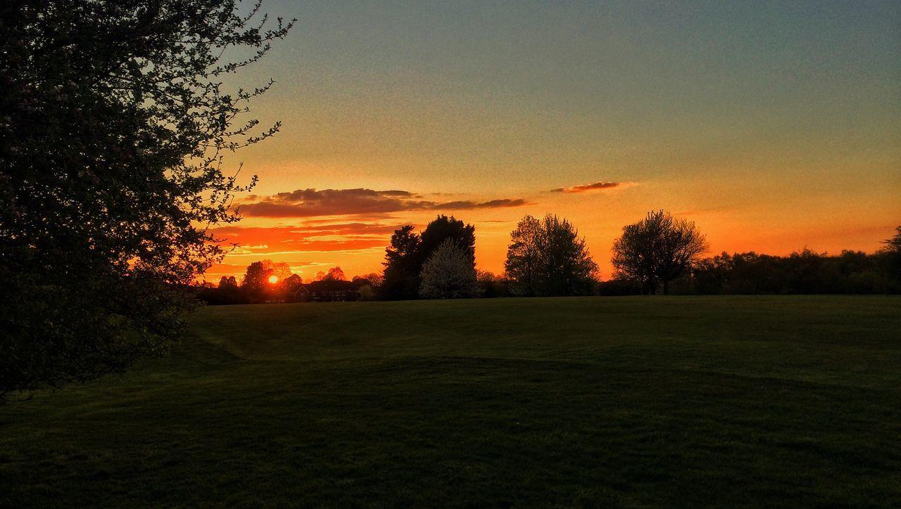 Sunset Orange Skyporn Beautiful Beauty Landscape Landscape_Collection Eye4photography  EyeEm Best Shots EyeEm