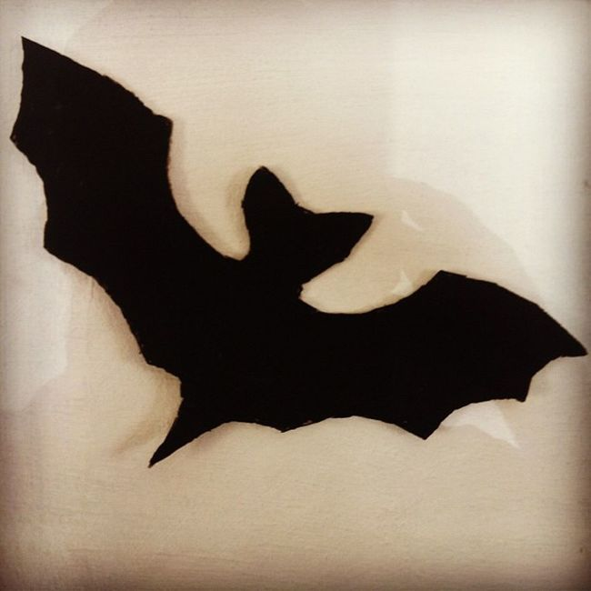 Iam the batman! Batman Africa Movies
