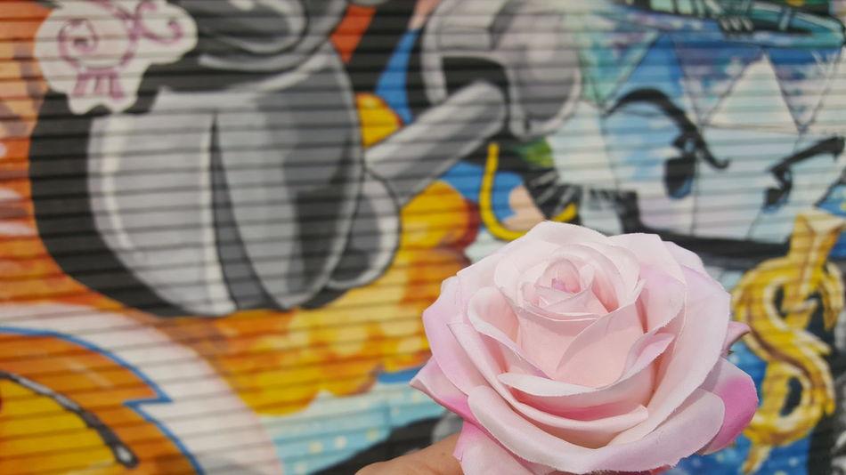 Graffiti Art Streetart Pink Rose Colorful My Point Of View Graffiti Art, Drawing, Creativity Tattoo Shop Artistic Expression Rose🌹