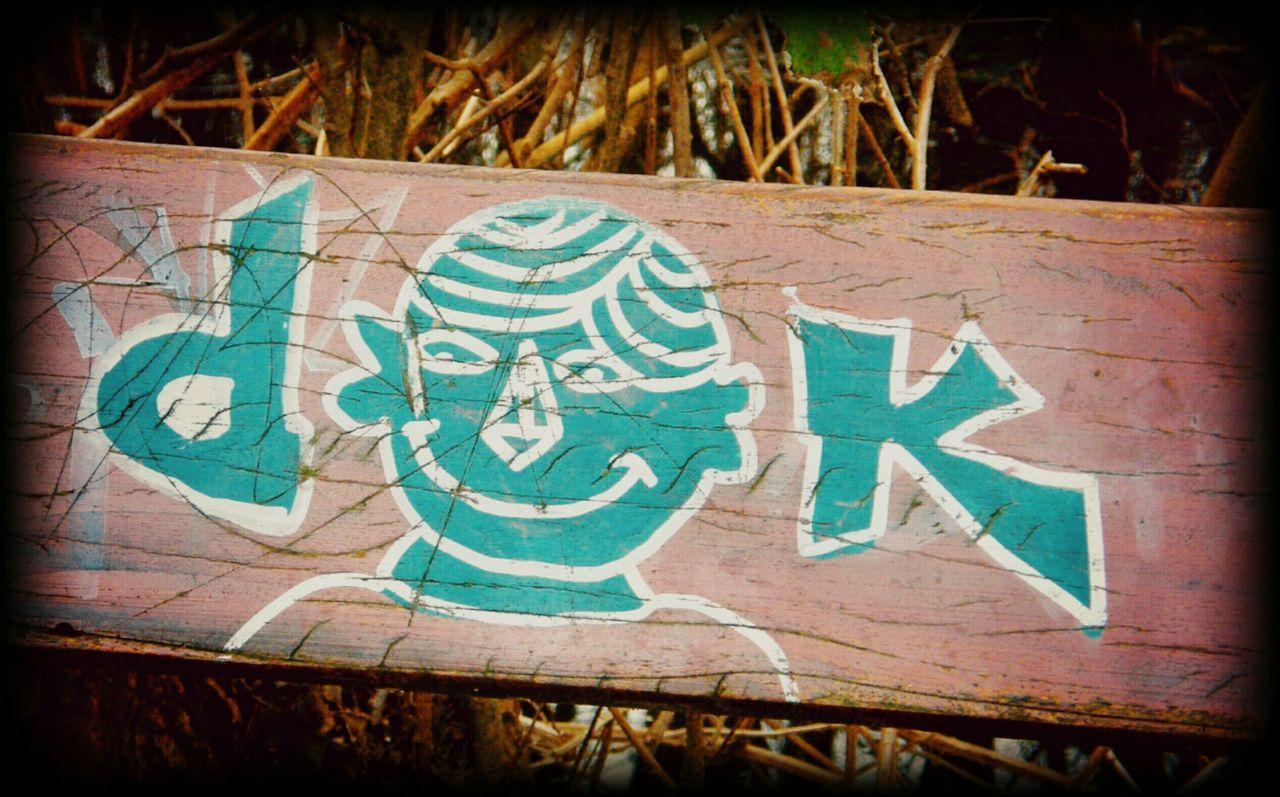 Graffiti On Wood Forest Symbol Creativity