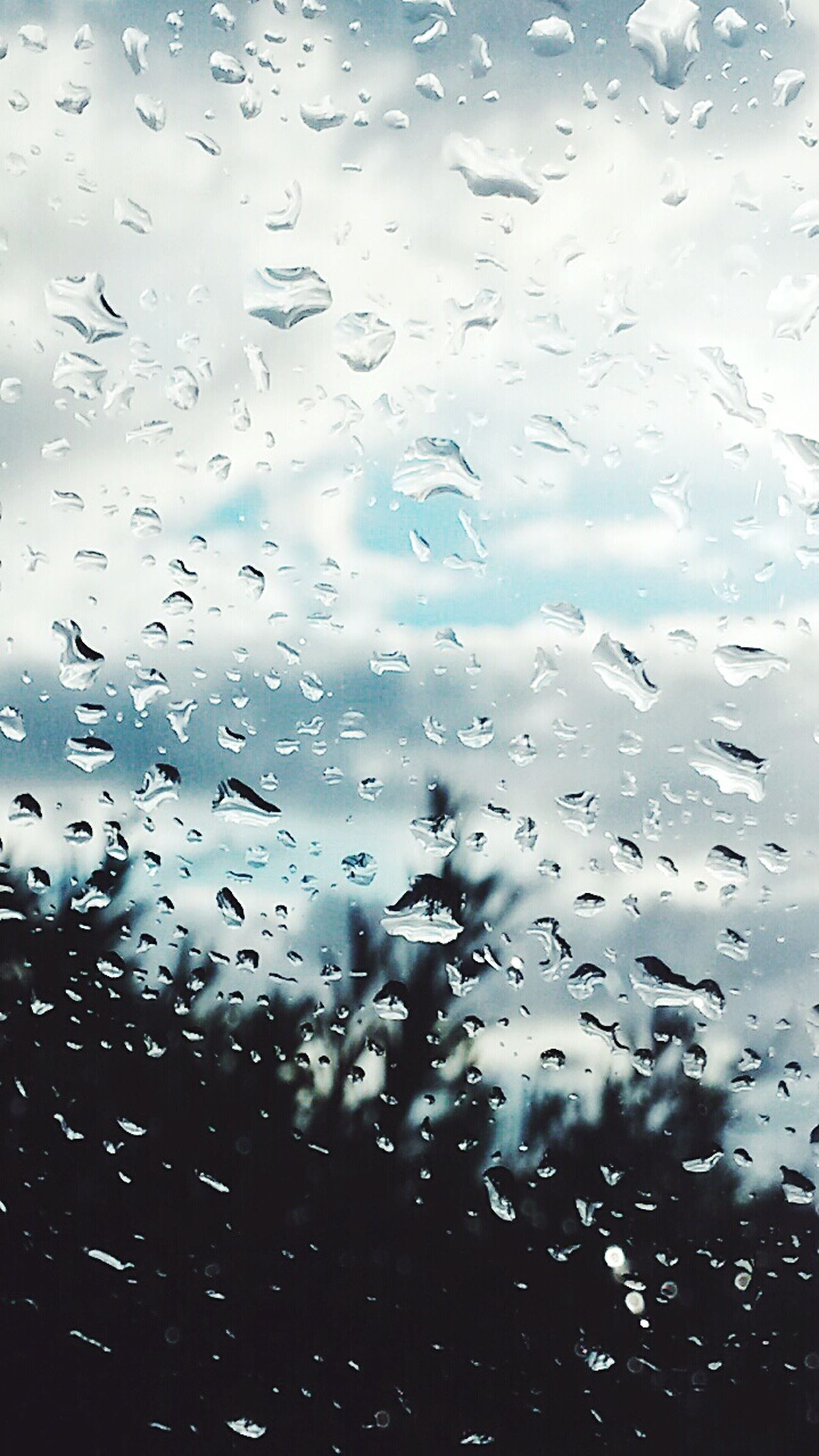 Raining Rainingday When It's Raining Water_collection Nature Nature_collection Urban Nature