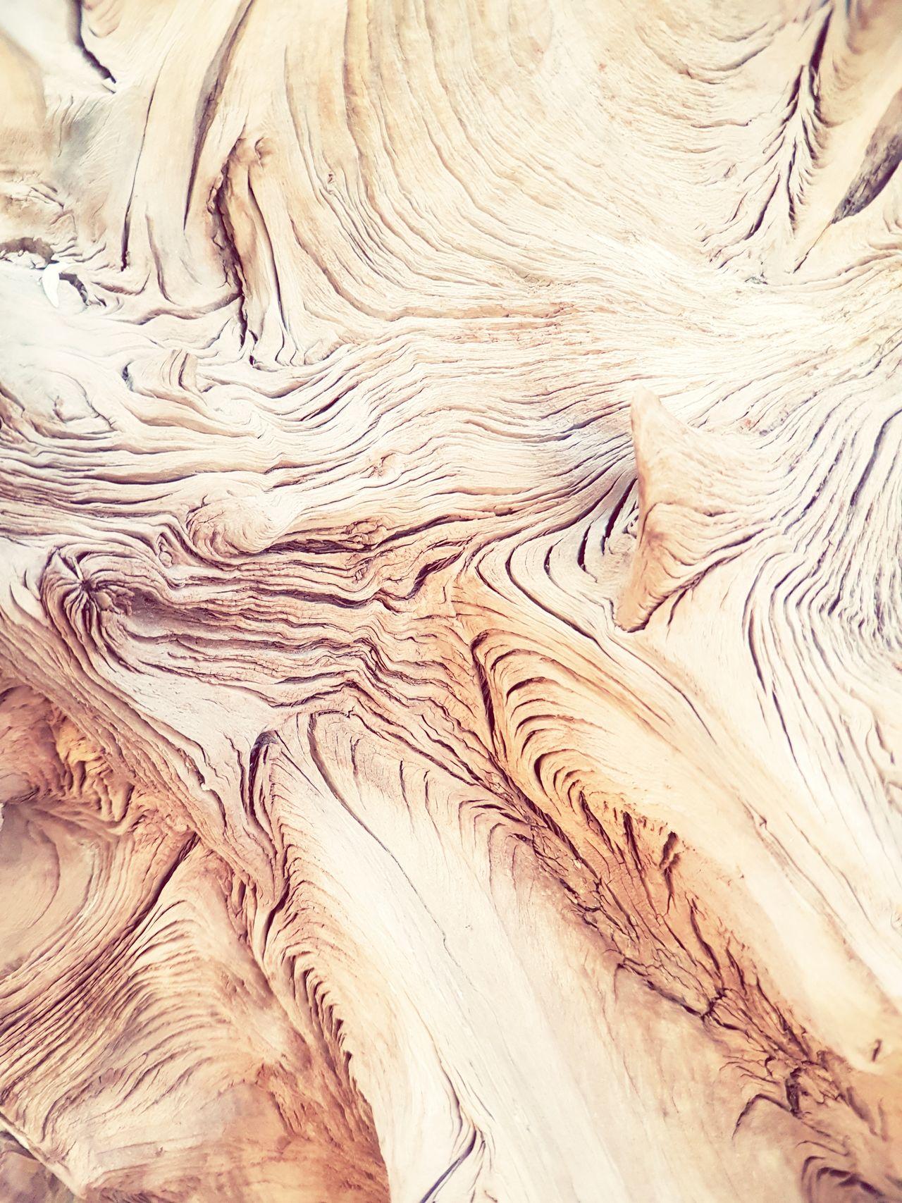 Pattern Textured  Wood Surface Wood Texture Wood Texture Material Wood Texture Background Wood Structure Old Tree Old Tree Stumps Tree_collection  Tree_collection  Tree Wood - Material Wood Cover Nature Textured  Backgrounds Tree_collection