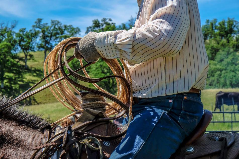 Beautiful stock photos of cowboy, Animal Themes, Casual Clothing, Cowboy, Day