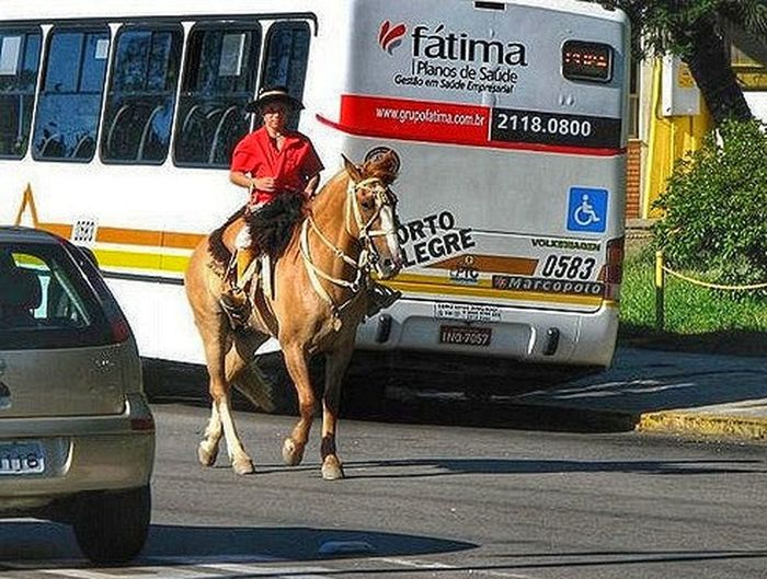 Asphalt cowboy Cowboy Asphalt Cowboy!!!! Transportation Car Mode Of Transport Animal Riding Mammal