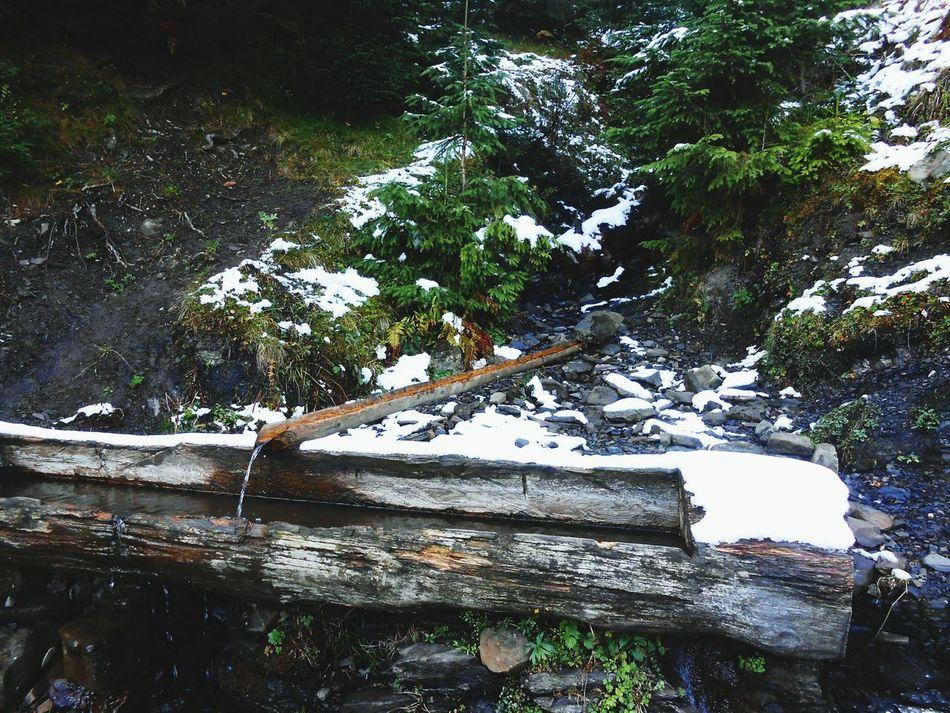 Winter Is Coming Karpathian Mountain