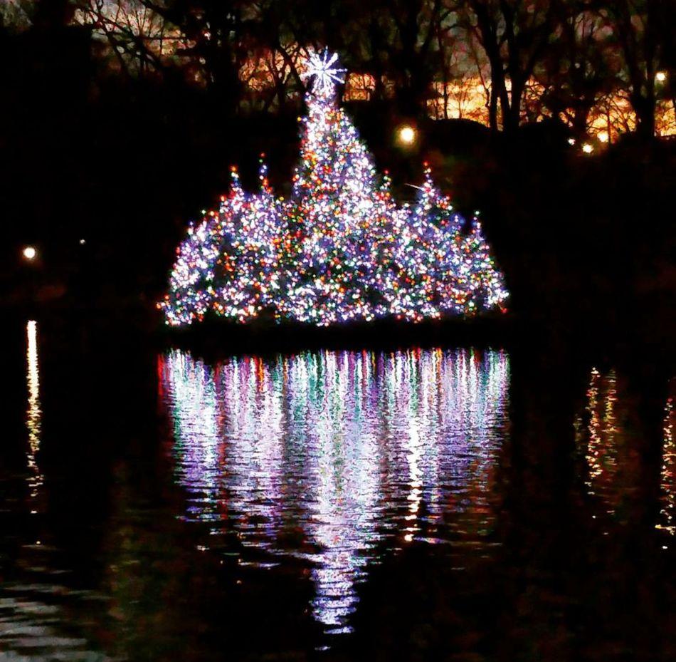 Central Park EyeEm Nature Lover Samsung Galaxy Note 4