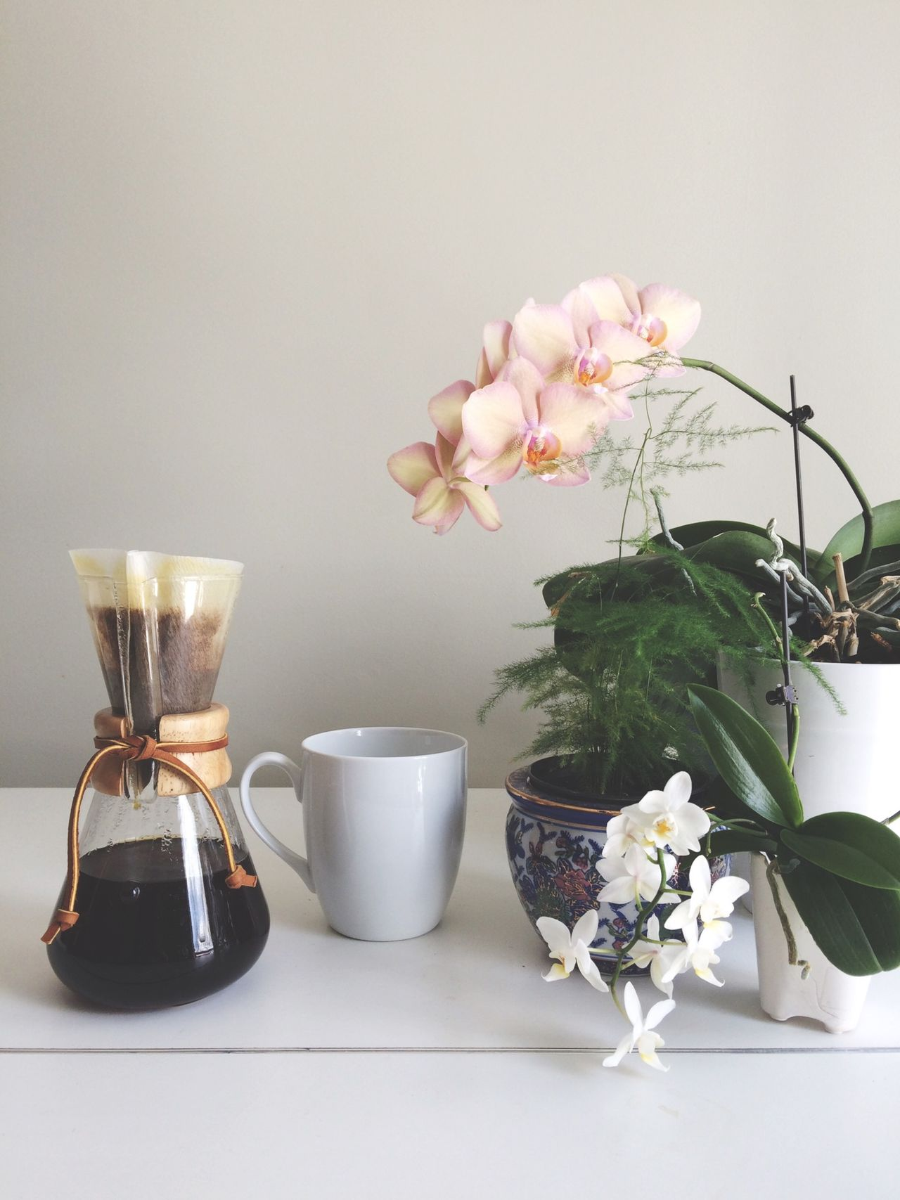 Beautiful stock photos of orchid, Chemex Coffeemaker, Coffee - Drink, Coffee Cup, Coffee Maker