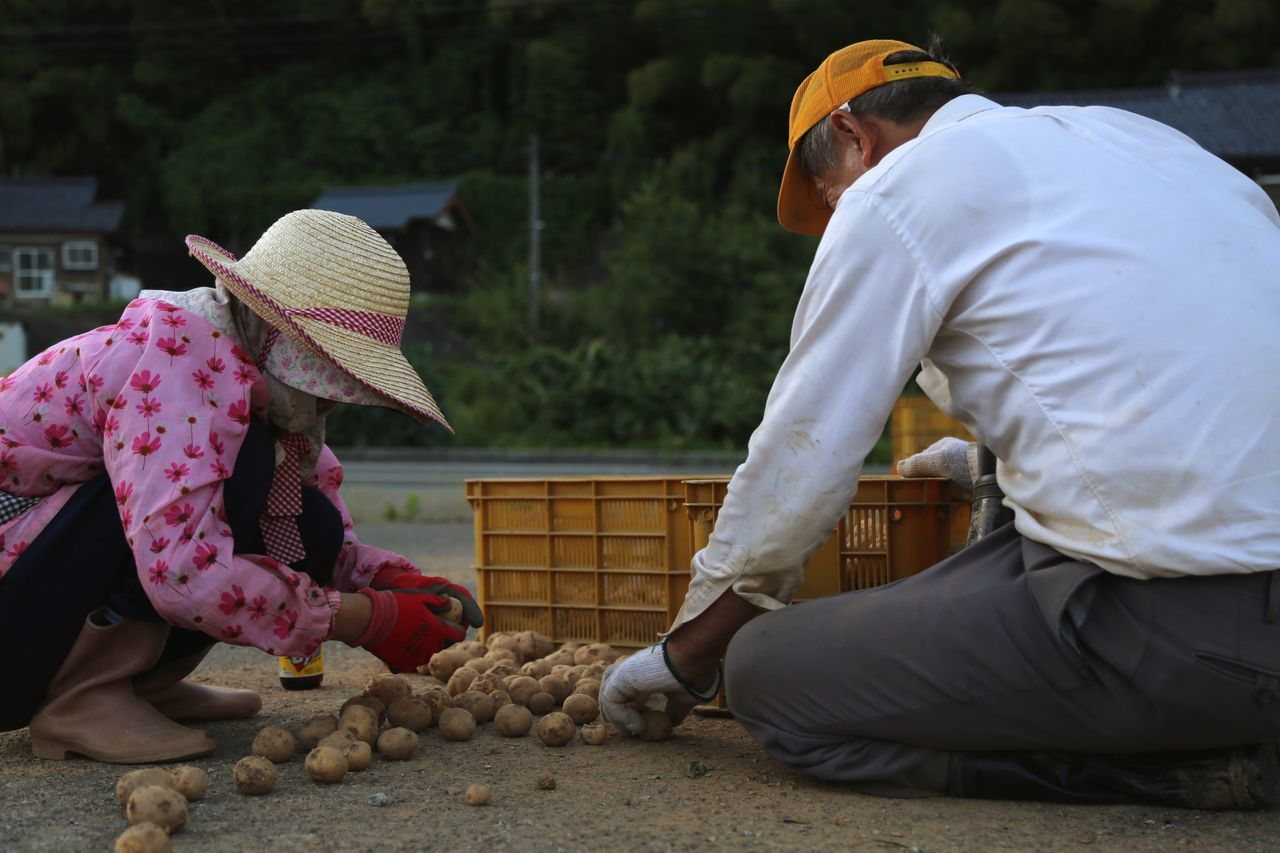 Farmer Poteto Couple Country Life Countryside Taking Photos Enjoying Life Japan Photography Daytime Photography Life In Motion Point Of View From My Point Of View Getting Inspired Moments Human Peaple Photography Who Inspires You Working Fresh On Eyeem