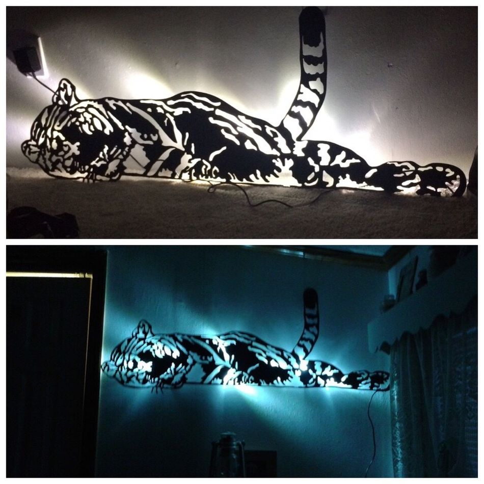 Metal working I've done, plasma cut, sandblasted, powder coated, and lights added to the back. Plasmacutting Tiger Lights Metalwork Metalworking