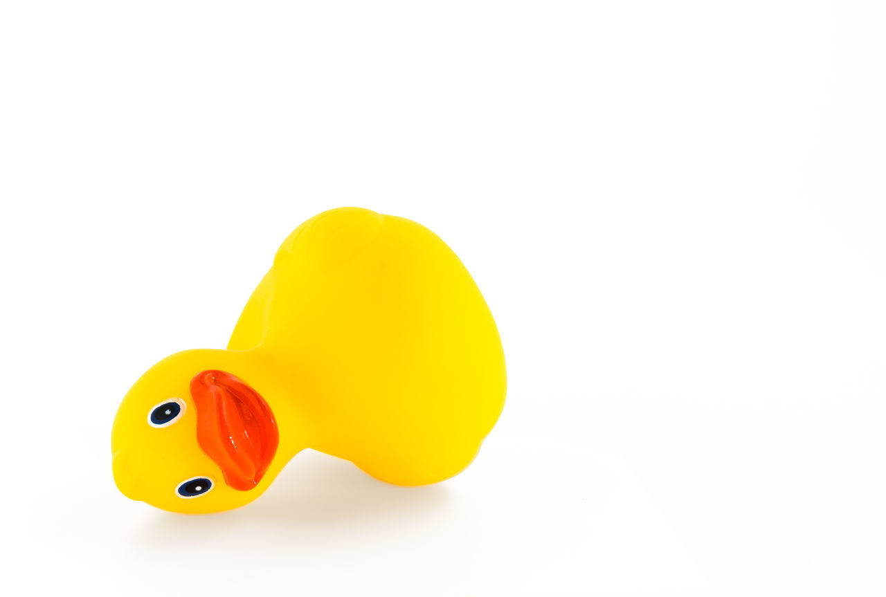 A fallen ducky, isolated on white background with copy space. Abuse Baby Beak Bird Childhood Clean Color Palette Dry Duck Ducky  Eyeemphoto Fallen Fun Isolated One Plastic Rubber Duck Sad Single Object Squeaky Still Life Toy Violence White Yellow
