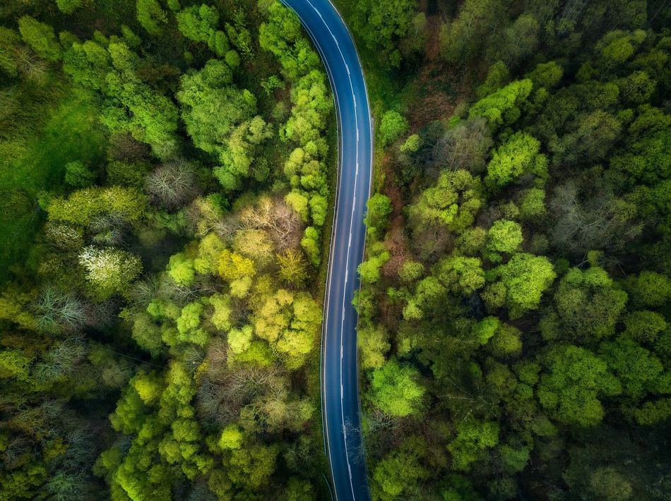 Landscape,travel,colors,aerial,dji,photography,greens,forest,inspiración,amazing First Eyeem Photo Lost In The Landscape