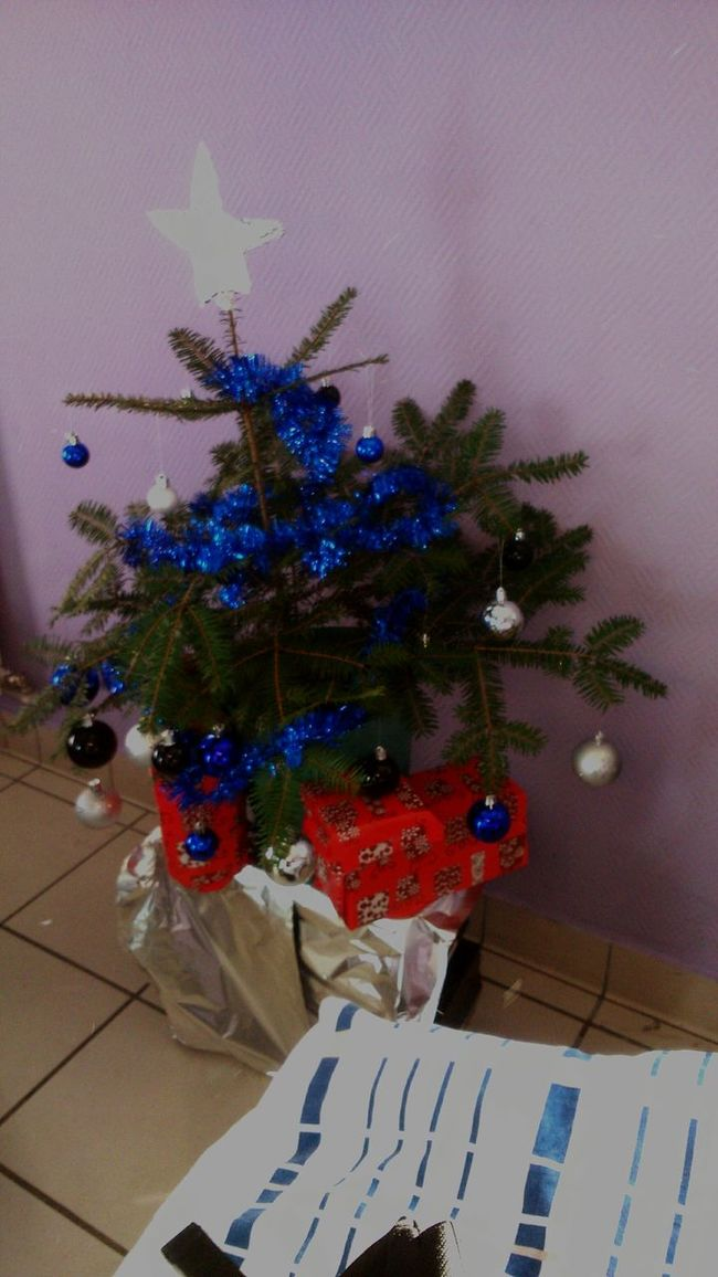 Christmas Tree Lycée Militaire D'autun