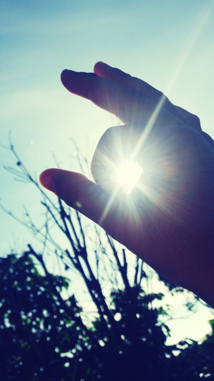 sun, lens flare, sunbeam, sunlight, nature, low angle view, close-up, outdoors, human body part, human hand, one person, beauty in nature, sunset, sky, day, flower, people